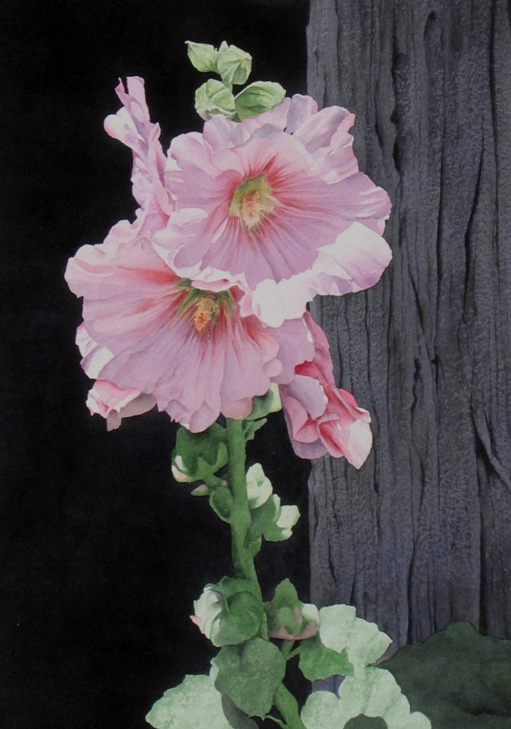 Sunlit Hollyhocks - sold