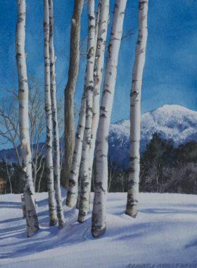 Weathersfield Birches - size 14 x 10.5in