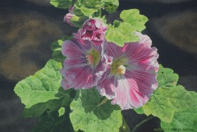 """Hollyhock Light"" - size 14in x 21in - price $2500"