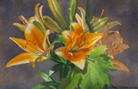 Tiger Lilies - size 12in x 17in