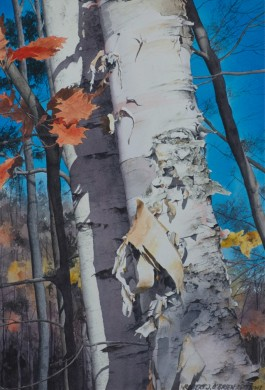 Paper Birch size - 17.5in x 12in - sold