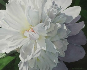 Peony Bloom - size 20in x 24.5in (image)