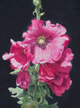 Red Hollyhocks - size 16in x 12in - $1000